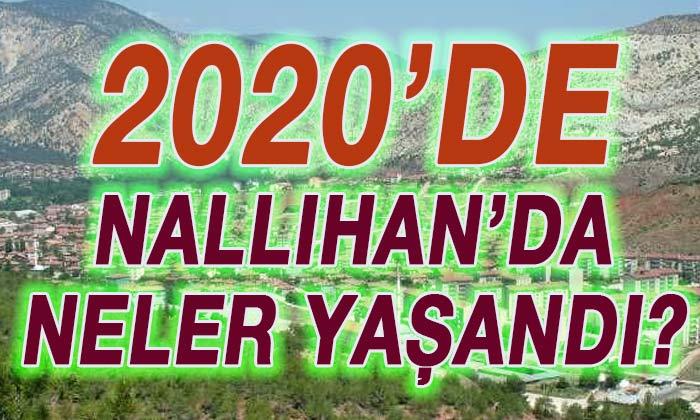 Nallıhan'da 2020'de neler yaşandı?