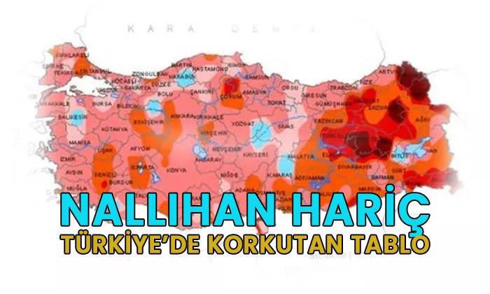 Nallıhan hariç Türkiye'de korkutan tablo
