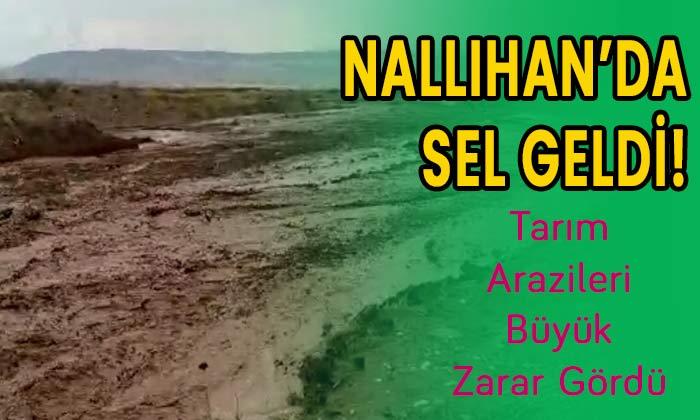 Nallıhan'da sel geldi! Tarım arazileri büyük zarar gördü!