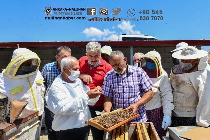 Nallıhan'da yoğun katılımla tamamlandı